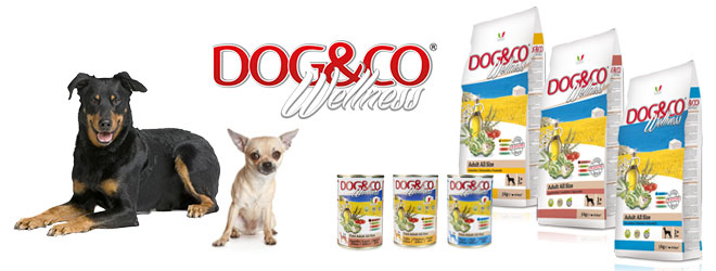 Italian holistic food for dog Dog&Co Wellness