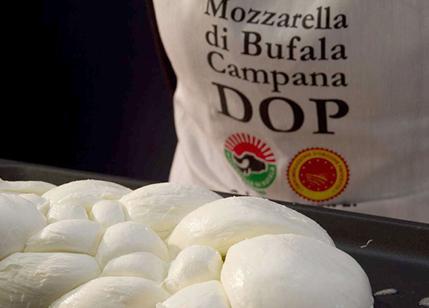 Italian High Quality Mozzarella di Bufala