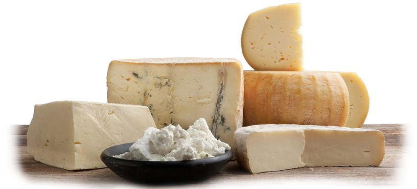 Export of High Quality Mixed Italian Cheese