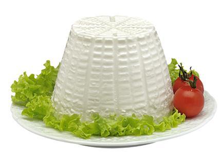 Italian cheese ricotta